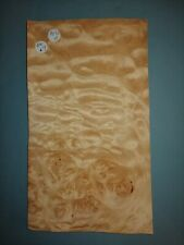 CONSECUTIVE SHEETS OF BIRDS EYE MAPLE VENEER 24 X 31 cm BMA#12 MARQUETRY