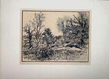 """Gravure sur bois originale de BELTRAND, """"La forêt"""""""