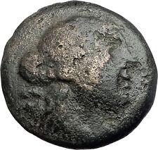 AMPHIPOLIS in MACEDONIA 148BC RARE R1 Ancient Greek Coin ARTEMIS & GOATS i62043