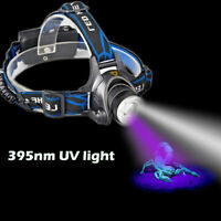 10W Dual LEDs White Head Light Fishing Zoom Ultraviolet UV Black Light Headlamp