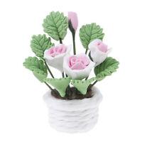 1:12 Fleurs De Maison De Poupée Miniature Pour Le Décor De La Salle De La W_wr