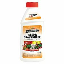 Spectracide Weed & Grass Killer Concentrate2 16-Ounce