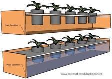 Aquaponics CD Homesteading Aquaculture Soilless Growth Raising Plants Fish 80 bk