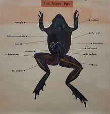 The Verve Pipe 1999 Rare Original Translucent Light Box Promo Poster