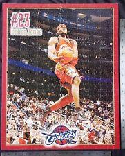 "LeBRON JAMES 20"" x 16"" WOOD PUZZLE (500 Pieces) CLEVELAND CAVALIERS NBA NEW/MINT"
