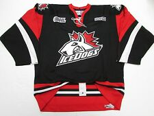 MISSISSAUGA ICEDOGS OHL AUTHENTIC BLACK PRO CCM HOCKEY JERSEY SIZE 54