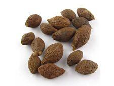 Malva Nut  Pang Da Hai Dried Sterculia Lychnophora, Dried Pangdahai (100g)