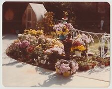 Vintage 80s PHOTO Garden w/ Flowers Floral Pots