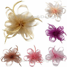 VINTAGE ROSE LOOP FEATHER FASCINATOR WEDDINGS RACING PARTY HAIR HEADPIECE BRIDAL