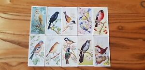 Full Set Carreras Bird's Of the Countryside. A3
