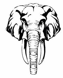 Large Elephant Wall Art vinyl Decal / Sticker