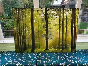 BEAUTIFUL WOODLAND FOREST CANVAS PICTURE PRINT WALL ART CHUNKY FRAME LARGE