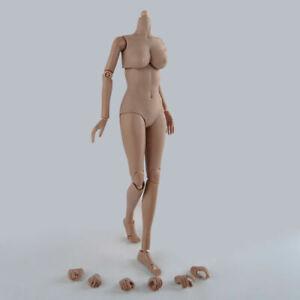 1/6 Female Body Suntan Large Bust Action Figure Body Half Seamless Figure Toys