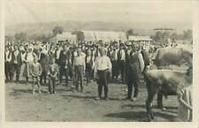Photo postcard agricultural market fair mary go round cows ethnic types folk
