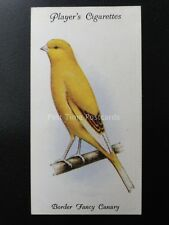 No.7 BORDER FANCY CANARY - Aviary and Cage Birds by John Player 1933