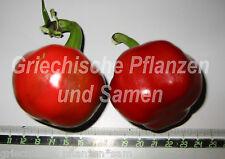 Calabrese GROSSER kirsch-chili Chilli Medio + picante 10 Semillas Frescas