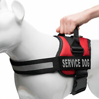 Service Dog Vest Harness w/ 2 Patches - Select Two Matching Patches!