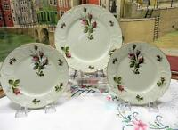 VINTAGE ROSENTHAL CLASSIC MOSS ROSE 2 BREAD & BUTTER AND 1 SALAD PLATE 1961-94