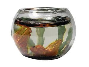 Miniature Dollhouse Orange Fish In A Bowl 1:12 Scale New