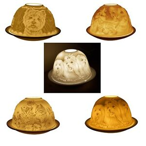 Light-Glow Tealight Candle Holder, Dogs, Cats, Kittens Tea Light Dome Boxed Gift