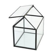 Glass Geometric Terrarium Faceted Tabletop Succulent Plant Planter Container Box