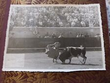 ancienne photo noir et blanc corrida arênes de BEZIERS 34