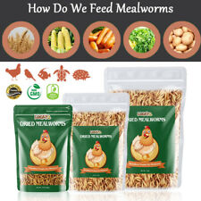 Bulk Dried Mealworms for Chickens Treats Duck Feed Wild Birds Organic Non-Gmo Us