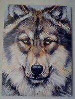 MARTIN KATON WONDERFUL WOLF GICLEE ON CANVAS SIGNED/# W/COA GORGEOUS! 24X32