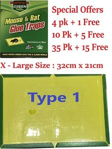 Special Offers Mice Mouse Rat Traps Snare Catcher Pad Trap Board