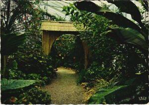 CPM HYERES Parc Olbius-Riquier - La Serre Exotique (1113219)