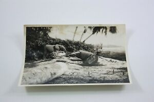 ELEPHANT CARRYING HEAVY WEIGHT Photograph 1930s Animal EXOTIC Construction
