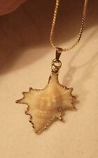 Delightful Small Sculpted Seashell Gilded Edges Goldtone Pendant Necklace ++++