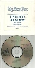 BIG BAM BOO If you could see me now ULTRA RARE 1989 USA PROMO Radio DJ CD single