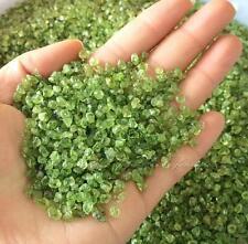 50g Natural Peridot Olivine Quartz Crystal Stone Rock Chips Lucky Healing F085