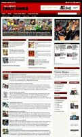 COMIC BOOKS SHOP and BLOG WEBSITE BUSINESS FOR SALE! with TARGETED SEO CONTENT