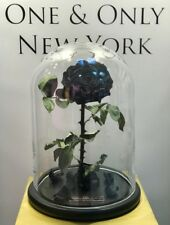 Forever Rose in Glass Dome Beauty And The Beast Preserved Eternal Gift Mother'sK