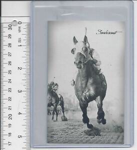 Seabiscuit 2013 Panini Golden Age Jumbo Card