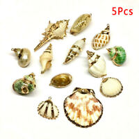 5Pcs/Lot Natural Shell Conch Charms Pendants Beads DIY Jewelry Findings Cra Wn