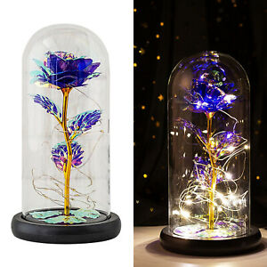 Enchanted Eternal Rose Flower In Glass Dome LED Light Valentine's Day Gift Deco