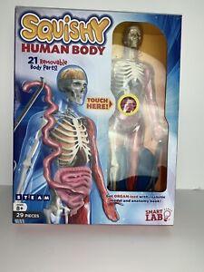 Squishy Human Body - Smart Lab - 9780760358580