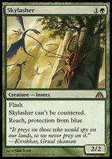 SKYLASHER NM mtg Dragon's Maze Green - Creature Insect Rare