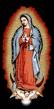 """Virgin Mary Beach Towel Guadalupe 100% Cotton Large 30"""" x 60"""" new"""