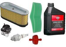 Luftfilter Zündkerze Motoröl Briggs&Stratton691667,493910 8-11,5PS Rasentraktor