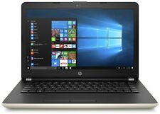 HP colt 14.0 Inch Intel Pentium 2.56GHz QUAD 8GB 128GB Windows Laptop - gold