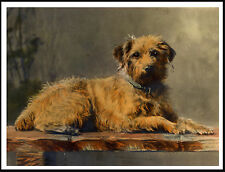 BORDER TERRIER ON RUSTIC BENCH LOVELY VINTAGE STYLE DOG PRINT POSTER
