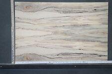 Tonewood Spalted Maple 18192 Bastelholz Ahorn Aufleimer Guitar Tonholz Blank