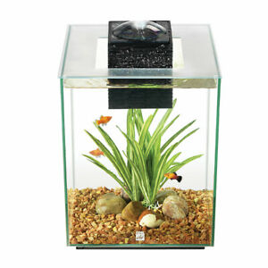 Fluval Chi 19L Glass Aquarium Tank Complete with Filter, LED Light