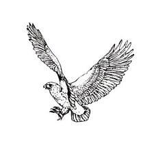 HAWK Unmounted bird rubber stamp, bird of prey, Sweet Grass Stamps #9