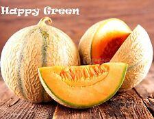 VEGETABLE - MELON CHARENTAIS - 150 SEEDS - Cucumis melo - Cantaloupe