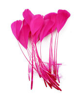 """Feathers x 10 pcs Stripped Coque Millinery and Crafts 5-7"""" HOT PINK"""